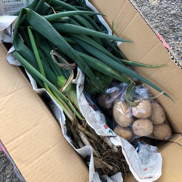 大橋農園 4種類 野菜詰め合わせ 食品/飲料/酒の食品(野菜)の商品写真