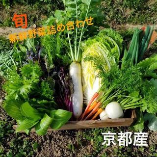 新鮮とれたて京野菜をお届け!!無農薬野菜 減農薬野菜(野菜)