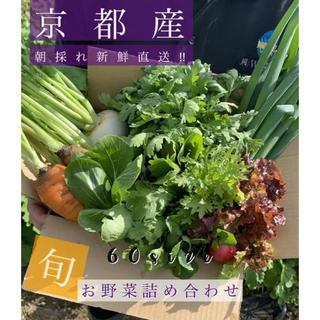 新鮮野菜詰め合わせ!!京都無農薬 減農薬 とれたてをお届け!(野菜)