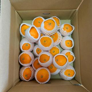 愛媛県産 産地直送 しまなみの風(規格外お試し品)4.5Kg(箱 梱包込み)(フルーツ)