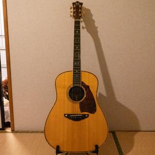 テリーズテリー TJ-100 カスタム(アコースティックギター)