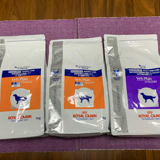 ロイヤルカナン(ROYAL CANIN)のエイジングケア1kg2コ セレクトスキンケア1kg 3個セット 送料込(犬)