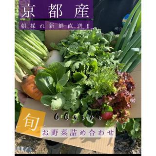新鮮野菜を最短でお届け!!京都露地栽培  京野菜!!(野菜)