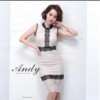 アンディ(Andy)のAndy ドレス(ナイトドレス)
