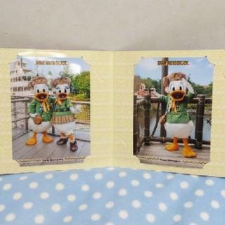 ディズニー(Disney)のディズニーランド◼️ウッドチャック グリーティング 台紙写真 ドナルド デイジー(写真)