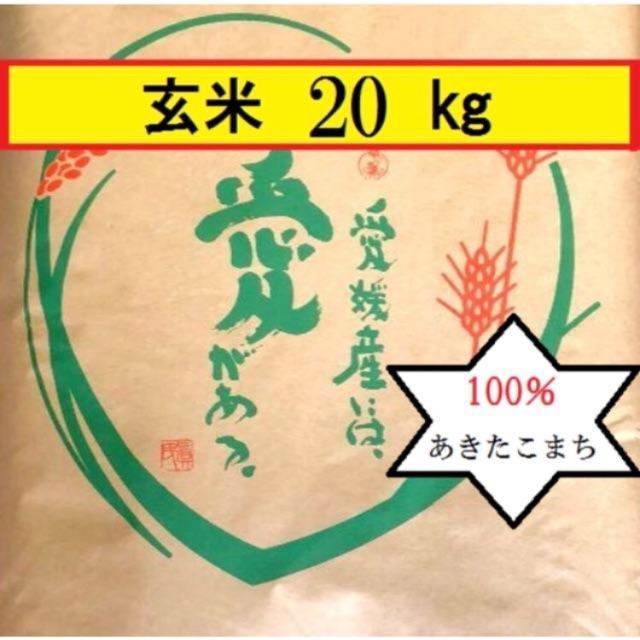 お米 令和元年愛媛県産あきたこまち 玄米 20kg 食品/飲料/酒の食品(米/穀物)の商品写真