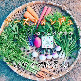 【チーズフォンデュにおススメ】栽培期間中農薬不使用 旬彩野菜バスケット(野菜)