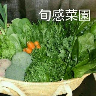 新鮮野菜セット100-①(野菜)