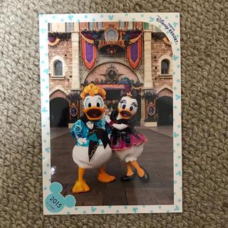 ディズニー(Disney)のヴィランズワールド ドナルド デイジー スペシャルフォト(写真)