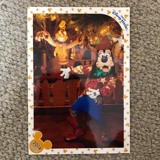 ディズニー(Disney)のハッピーハロウィンハーベスト グーフィー スペシャルフォト(写真)