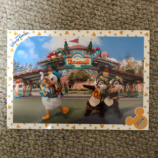 ディズニー(Disney)のクリスマス ドナルド チップ デール スペシャルフォト(写真)