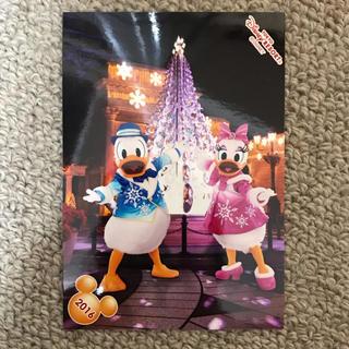 ディズニー(Disney)のカラーオブクリスマス ドナルド デイジー スペシャルフォト(写真)
