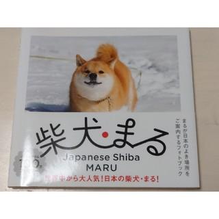 カドカワショテン(角川書店)の柴犬まる(趣味/スポーツ/実用)