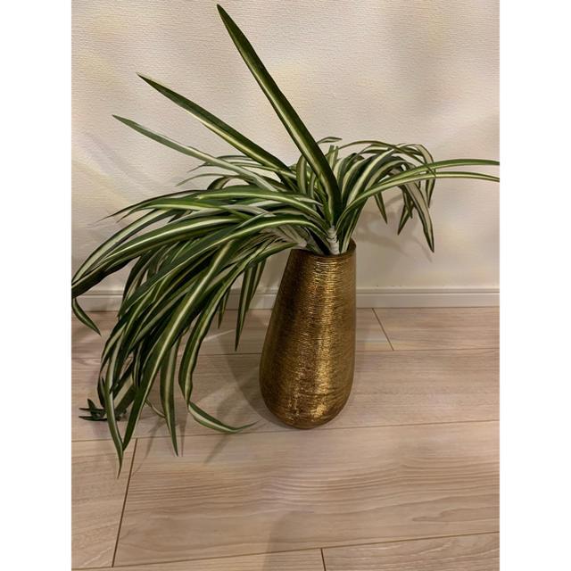 Francfranc(フランフラン)のFrancfranc アートグリーン オリヅルラン インテリア/住まい/日用品のインテリア小物(花瓶)の商品写真