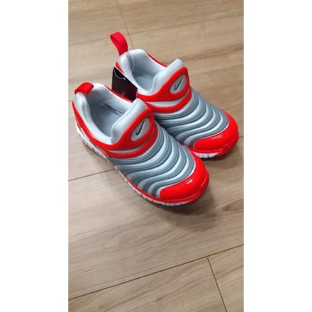 NIKE(ナイキ)の箱なし NIKEナイキ ダイナモフリーPS PRPT / CGY 20.0cm キッズ/ベビー/マタニティのキッズ靴/シューズ(15cm~)(スニーカー)の商品写真