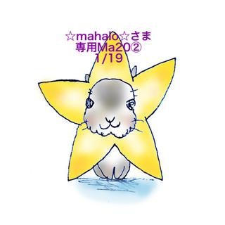 マキアージュ(MAQuillAGE)の★1/19★☆mahalo☆さま専用ページ❷(ファンデーション)