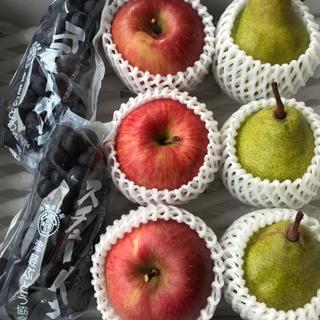 スチューベン、リンゴふじ、シルバーベル詰め合わせ、秀品(フルーツ)