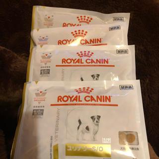ロイヤルカナン(ROYAL CANIN)のロイヤルカナン犬ユリナリーs/o小型犬用②^_^(犬)