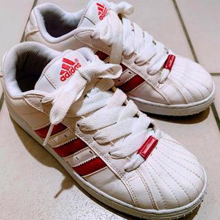 アディダス(adidas)のアディダス スニーカー 白 × ピンク 25.0cm  除菌済み(スニーカー)