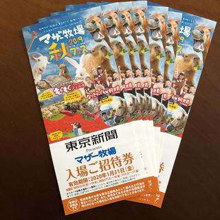 マザー牧場 招待券 7枚(遊園地/テーマパーク)