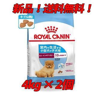 ロイヤルカナン(ROYAL CANIN)のロイヤルカナン SHN ミニ インドア パピー 4kg×2個(犬)