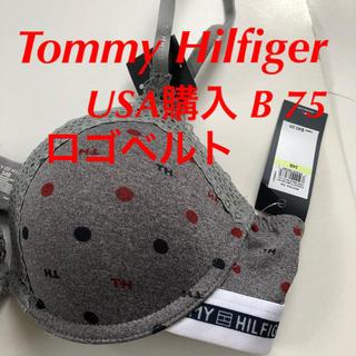 トミーヒルフィガー(TOMMY HILFIGER)のTommy Hilfiger ブラジャー 下着 B 75 USA購入 ロゴベルト(ブラ)
