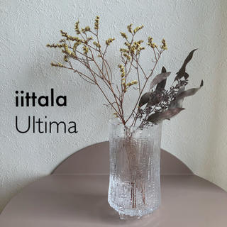 iittala - イッタラ ウルティマツーレ ビアグラス CL