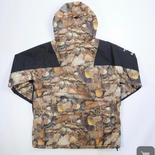 Supreme(シュプリーム)のsupreme× THE NORTH FACE  メンズのジャケット/アウター(マウンテンパーカー)の商品写真