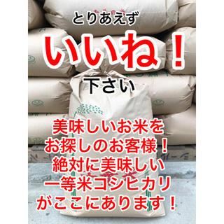 料亭との取引がある最高品質一等米コシヒカリ玄米20キロ.本物のコシヒカリを食卓に