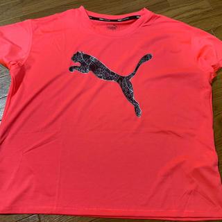 PUMAプーマ(Tシャツ(半袖/袖なし))