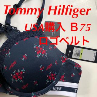 TOMMY HILFIGER - Tommy Hilfiger ブラジャー 下着 USA購入 B75 ネイビー