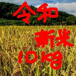 新春セール令和新米 低農薬玄米10キロ 山田錦の里より農家直送。