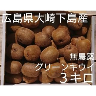 訳あり!広島県大崎下島産 無農薬グリーンキウイ3キロ(フルーツ)