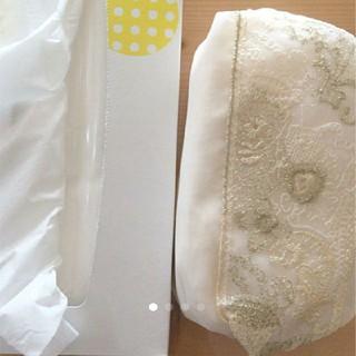 ポーラ(POLA)のPOLAオリジナル刺繍オーガンジーポーチ(ポーチ)