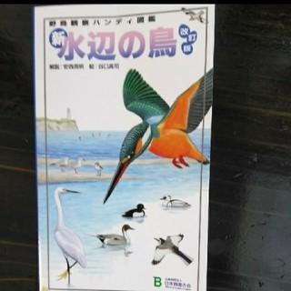 新・水辺の鳥改訂版