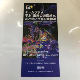 2枚 チームラボ  名古屋 愛知 名古屋市科学館(美術館/博物館)