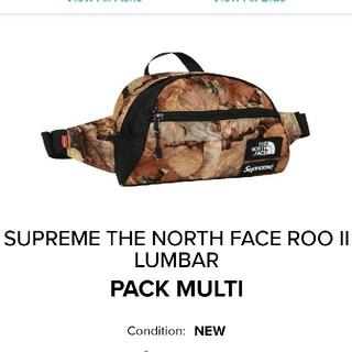 Supreme - Supreme THE North Face Pack MULTI