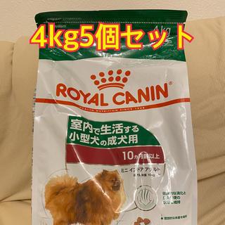 ロイヤルカナン(ROYAL CANIN)のロイヤルカナン ミニインドア アダルト 4kg5個セット!送料無料(犬)