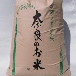 【新米】奈良県産ヒノヒカリ約10kg 玄米 農家直送