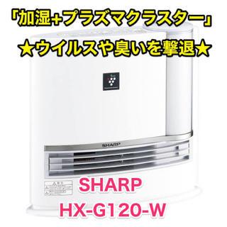 SHARP - SHARP シャープ 加湿セラミックヒーター HX-G120-W