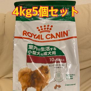 ロイヤルカナン(ROYAL CANIN)のロイヤルカナン ミニインドア アダルト4kg5個セット(犬)