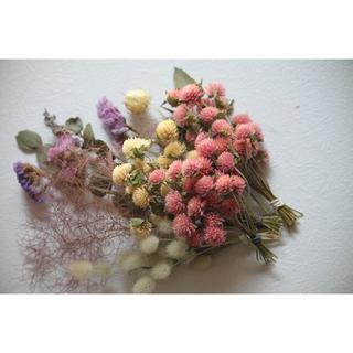 ミニブーケ用花材(1) スモークツリー,ユーカリ,千日紅など!(ドライフラワー)