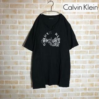 Calvin Klein - 【Calvin Kllein】カルバンクライン Tシャツ Lサイズ