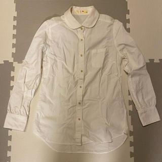 リッチ(rich)のrich シャツ 白 丸襟 サンプル品(シャツ/ブラウス(長袖/七分))