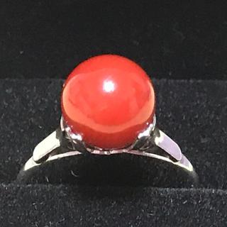 天然血赤珊瑚 silver リング 13号(リング(指輪))
