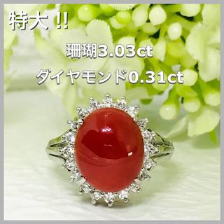 Pt900 特大 本珊瑚 3.03ct ダイヤモンド0.31ct リング(リング(指輪))