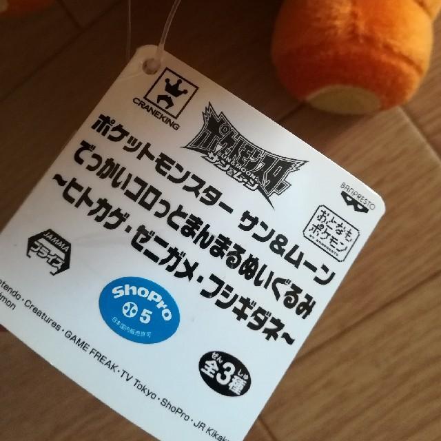 ポケモン(ポケモン)のポケットモンスターサン&ムーンでっかいコロッとまんまるぬいぐるみ ヒトカゲ エンタメ/ホビーのおもちゃ/ぬいぐるみ(ぬいぐるみ)の商品写真