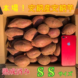 本場!熟成済み安納芋 SS  A級品 4kg(野菜)