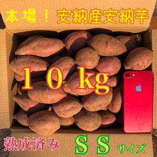 たっぷり10kg♪ 本場!熟成済み安納芋 SS A級品(野菜)