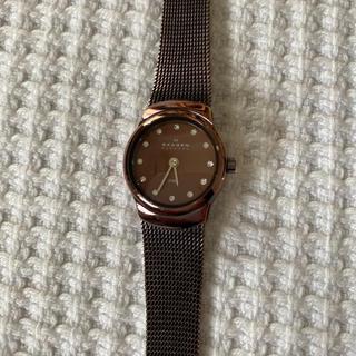スカーゲン(SKAGEN)のSKAGEN 腕時計 レディース ブラウン(腕時計)